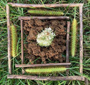 Nature Mandala made out of grass, sticks, dirt and flower